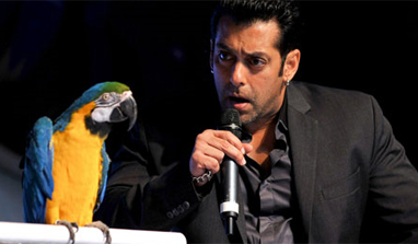 Two evictions on `Bigg Boss 6` this week