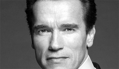 Arnold Schwarzenegger recommends flop film for terrorist interrogation