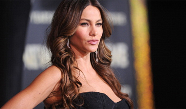 Sofia Vergara, Nick Loeb `seek couple`s counselling`