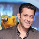 Cricket is first love of actors, I may play next year: Salman Khan