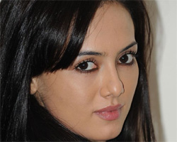 Sana Khan accused for attempted abduction of a 15-year-old girl.